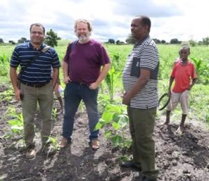 Nishant fra VOF, Erik fra ADDA og Mr. Goodluck fra NIRAS inspicerer solsikkemark_tb,388x336