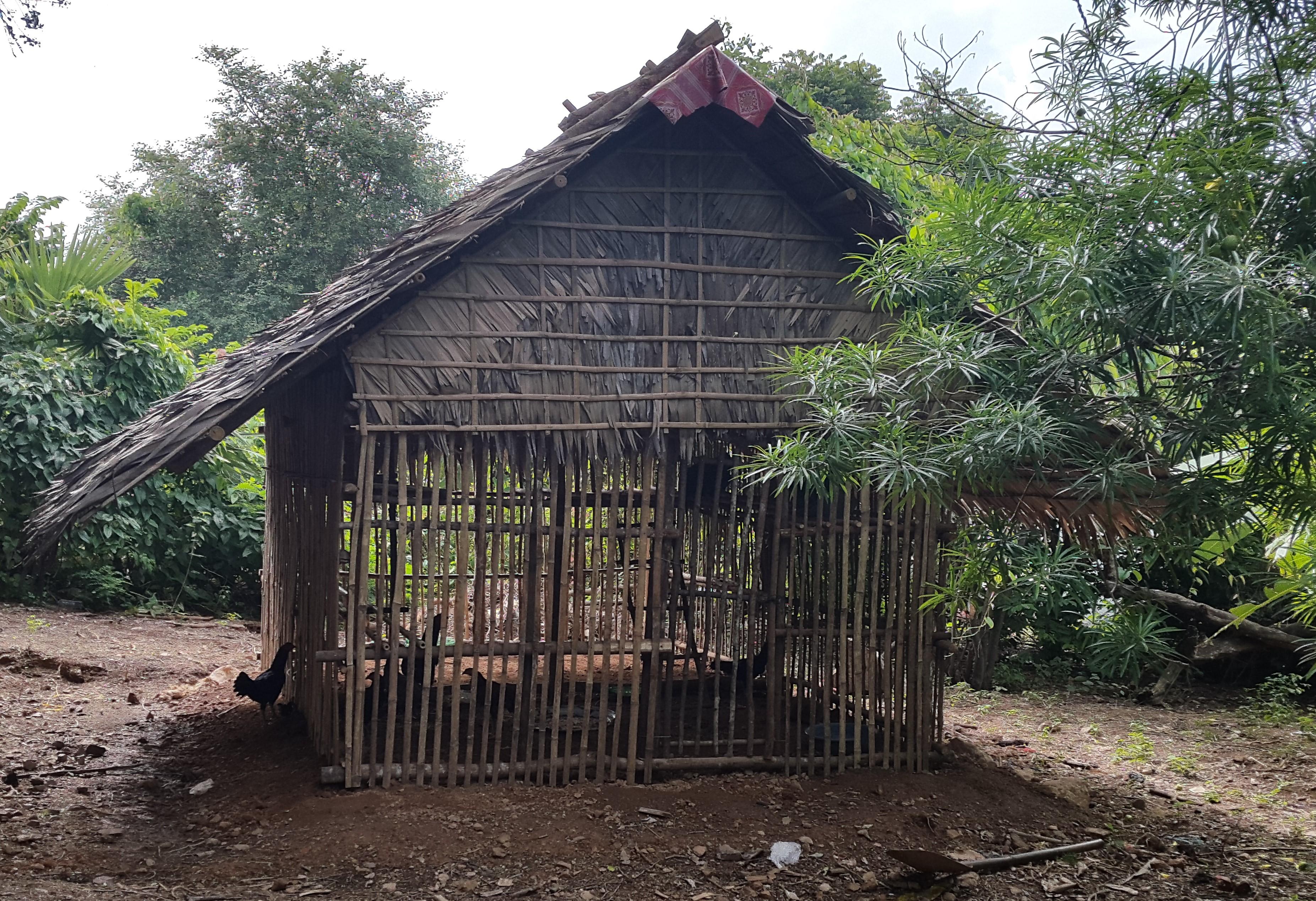 Hønsehus, der er opført af landsbybeboerne i Phnom Krom. Materialerne er betalt gennem ADDAs indsamlinger.