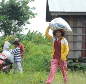 SHG member loan paddy rice from the rice bank at Trapangrun village,491x480